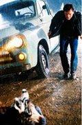 Racing Stripes Photo 12