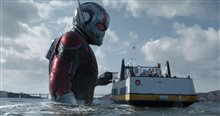 Ant-Man and The Wasp Photo 11