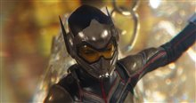 Ant-Man and The Wasp Photo 29