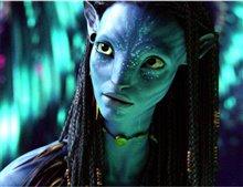 Avatar Photo 16