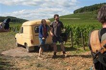 Back to Burgundy Photo 8