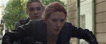 Black Widow Photo 4