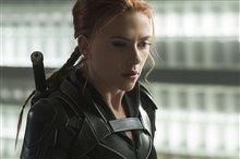 Black Widow Photo 14