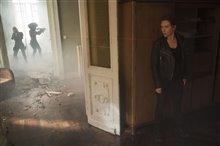 Black Widow Photo 30