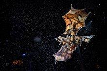 Cirque du Soleil: Worlds Away  Photo 3