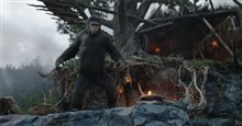 Dawn of the Planet of the Apes Photo 12