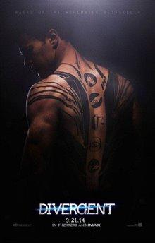 Divergent Photo 19 - Large