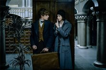 Fantastic Beasts and Where to Find Them Photo 4