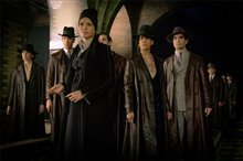 Fantastic Beasts and Where to Find Them Photo 30