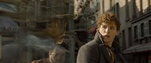 Fantastic Beasts: The Crimes of Grindelwald Photo 76