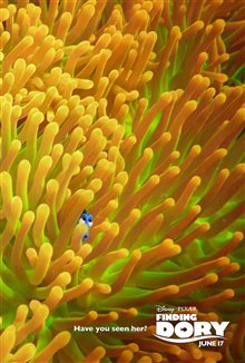 Finding Dory Photo 25