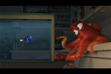 Finding Dory Photo 3