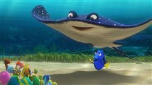 Finding Dory Photo 20