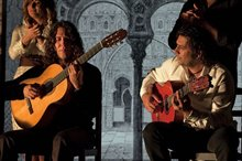 Flamenco, Flamenco Photo 22