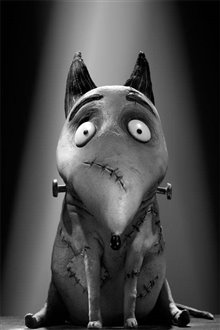 Frankenweenie Photo 24 - Large
