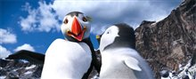 Happy Feet Two Photo 7