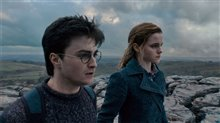 Harry Potter and the Deathly Hallows: Part 1 Photo 17