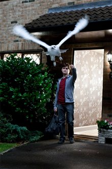 Harry Potter and the Deathly Hallows: Part 1 Photo 78