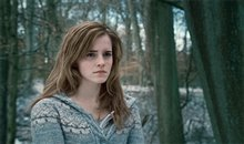 Harry Potter and the Deathly Hallows: Part 1 Photo 40