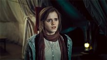 Harry Potter and the Deathly Hallows: Part 1 Photo 42