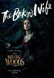 Into the Woods Photo 18