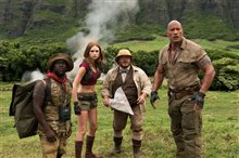 Jumanji: Welcome to the Jungle Photo 11