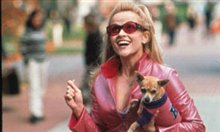 Legally Blonde Photo 3 - Large
