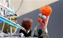 Muppets Now (Disney+) Photo 2