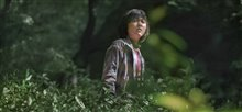 Okja (Netflix) Photo 2