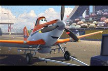 Planes Photo 40