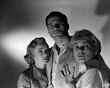 Psycho (1960) Photo 4