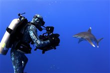 Sharkwater Extinction Photo 5