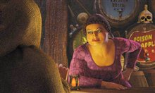 Shrek 2 Photo 10