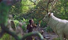 Snow White & the Huntsman Photo 19