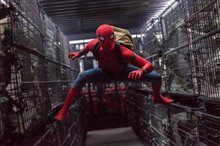 Spider-Man: Homecoming Photo 19