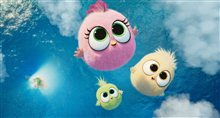 The Angry Birds Movie 2 Photo 5
