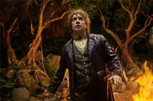 The Hobbit: An Unexpected Journey Photo 17