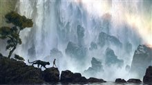 The Jungle Book Photo 3