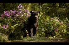 The Jungle Book Photo 10