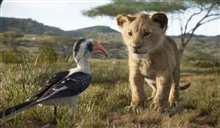 The Lion King Photo 2