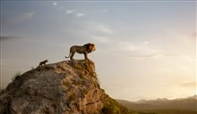 The Lion King Photo 15