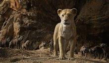 The Lion King Photo 20