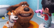 The Secret Life of Pets 2 Photo 6