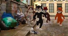 Tom & Jerry Photo 10