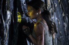 Tomb Raider Photo 21