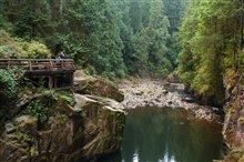 Virgin River (Netflix) Photo 12