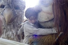 Where the Wild Things Are Photo 26