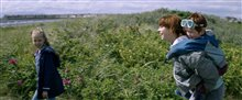 Wild Rose Photo 7