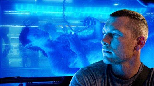 Avatar Photo 8 - Large