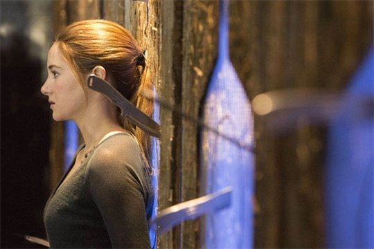 Divergent Photo 9 - Large